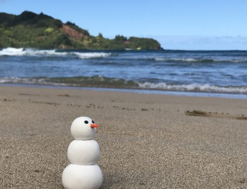 Tiny Snowman Goes to Kauai